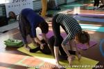 Хатха-йога для начинающих в Петрозаводске-15