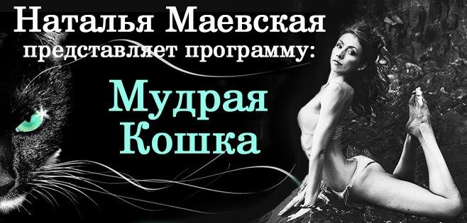 mudraya-koshka